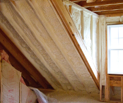 We install spray foam insulation like this throughout DE and MD homes.